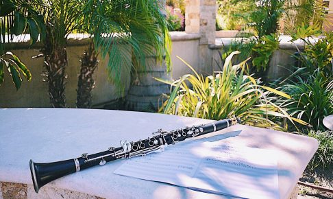 clarinet_and_palmtree